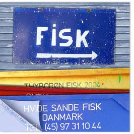StadtSicht Kopenhagen, Fisk 003