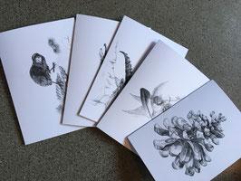 Kartenset Bleistift Zeichnungen handmade
