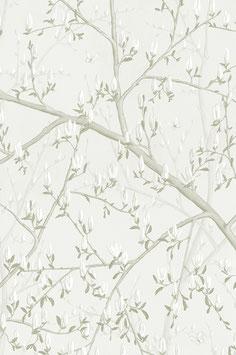 Magnolia Grisaille (3)