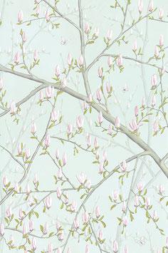Magnolia  Aqua - - (1)