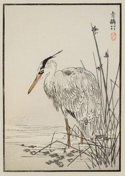 Reiher nach einem Motiv von Kono Bairei (1844 –1895) KB06