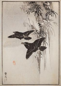 Vögel nach einem Motiv von Kono Bairei (1844 –1895) KB 03