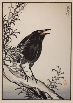 Vogel nach einem Motiv von Kono Bairei (1844 –1895) KB04