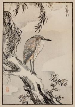 Reiher nach einem Motiv von Kono Bairei (1844 –1895) KB14