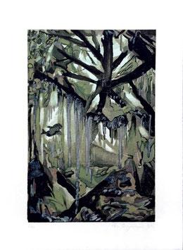 Holzschnitt: Hexenwald