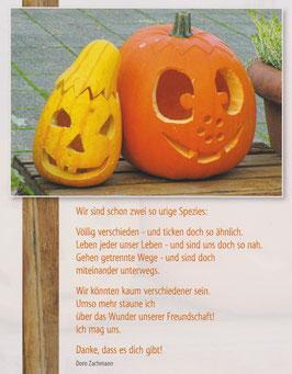 Große Postkarte: Zwei Kürbisse - Ich mag uns