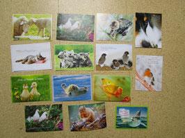 14 Postkarten TIERE