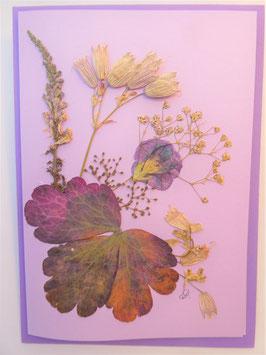 """3er Set Blüten-Faltkarten """"violet dream"""" BFP2"""