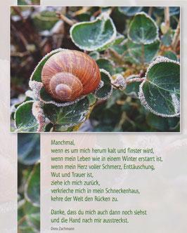 Große Postkarte: Schneckenhaus - Manchmal verkrieche ich mich