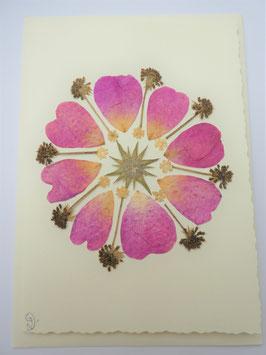 "3er Set Blüten-Faltkarten ""Blütenblätter-Mandala"" BFP14"