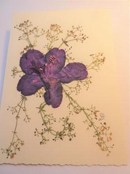 "3er Set Blüten-Faltkarten ""blauer Rhododendron"" BBP3"