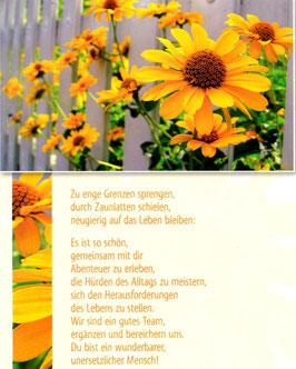 gelbe Blume durch Zaun - enge Grenzen sprengen