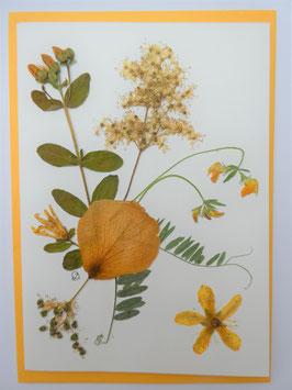"3er Set Blüten-Faltkarten ""gelbe Blüten"" BFP16"