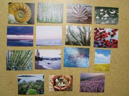 15 Postkarten WUNDER DER NATUR