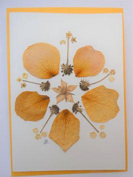 "3er Set Blüten-Faltkarten ""Mandala gelb"" BFP12"