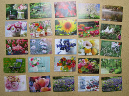 25 Postkarten BLUMENTRÄUME