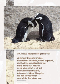 Pinguine - Ach, wie gut, dass es Freunde wie dich gibt