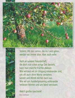 Große Postkarte: Apfelbaum - Älter, aber reifer