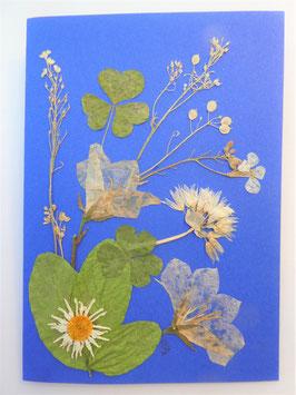 "3er Set Blüten-Faltkarten ""blütenweiß auf himmelblau"" BFP5"