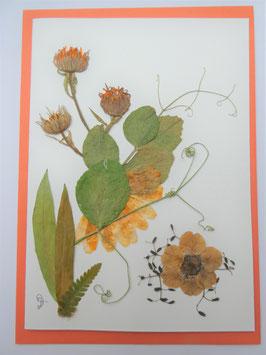 """3er Set Blüten-Faltkarten """"orange - weiß - blau"""" BFP15"""
