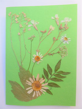 "3er Set Blüten-Faltkarten ""blütenweiß auf grasgrün"" BFP4"