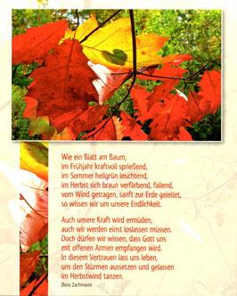 Herbstblätter - Wie ein Blatt am Baum