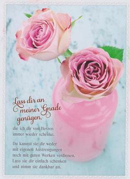 Zwei Rosa Rosen - Lass dir an meiner Gnade genügen