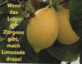 10 x Postkarte Wenn das Leben dir Zitronen gibt