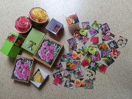 Mein ROSEN-Memory in hübscher Geschenkschachtel, 38 teilig