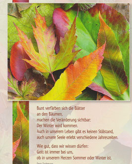 Große Postkarte: Bunte Blätter - Im Leben gibt es keinen Stillstand