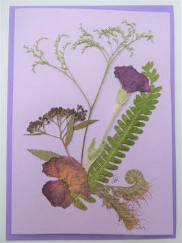 "3er Set Blüten-Faltkarten ""Blütenträume in lila"" BFP13"