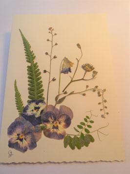 "3er Set Blüten-Faltkarten ""blaues Stiefmütterchen"" BBP8"