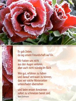 Postkarte Gefrorene Rosen - unsere Freundschaft lag auf Eis