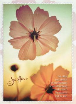 Zwei Blumen - Sei offen