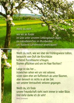 Postkarte Kirschbaum - Weißt du noch