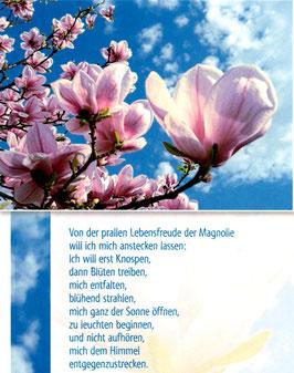 Postkarte Magnolie - Von der prallen Lebensfreude