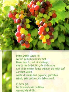 Weintrauben - deine Geduld mit mir