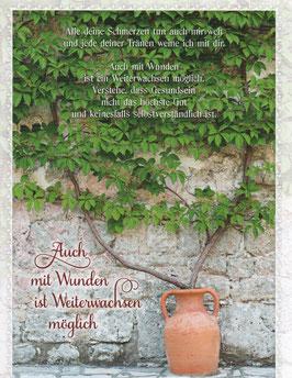 Mauerpflanze - Auch mit Wunden ist Weiterwachsen möglich