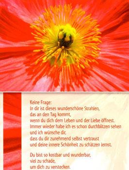 Geöffnete Blüte - dein wunderschönes Strahlen