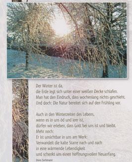 Große Postkarte: Verschneite Birken - Auch in den Winterzeiten des Lebens