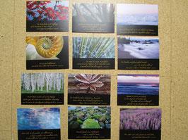 12 Postkarten mit Texten von  H.-J. ECKSTEIN