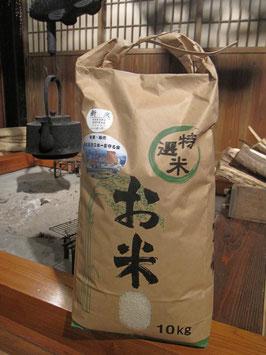 のういち米 (白米10kg)