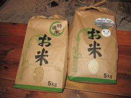のういち米 (白米5kg&玄米5kgセット)