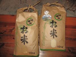 のういち米 (白米10kg&玄米10kgセット)