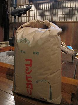 のういち米 (玄米30kg)