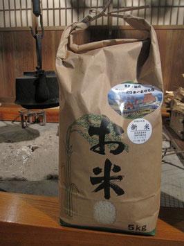 のういち米 (白米5kg)
