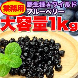 商品名野生種★ワイルドブルーベリー大容量1kg≪常温≫