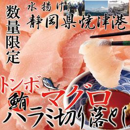 商品名静岡県焼津港で水揚げされた本場のマグロ!!【訳あり】トンボマグロハラミ切り落とし500g