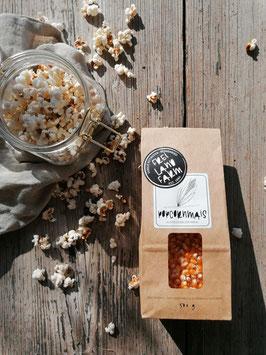 Popcornmais (500 g) - Versand oder Hofabholung