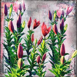 Blumen 0625